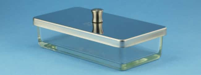 Karl Hecht™Assistent™ Glass Instrument Trays Dimensions (L x W x H): 170 x 90 x 45mm; Product Type: With cover Products