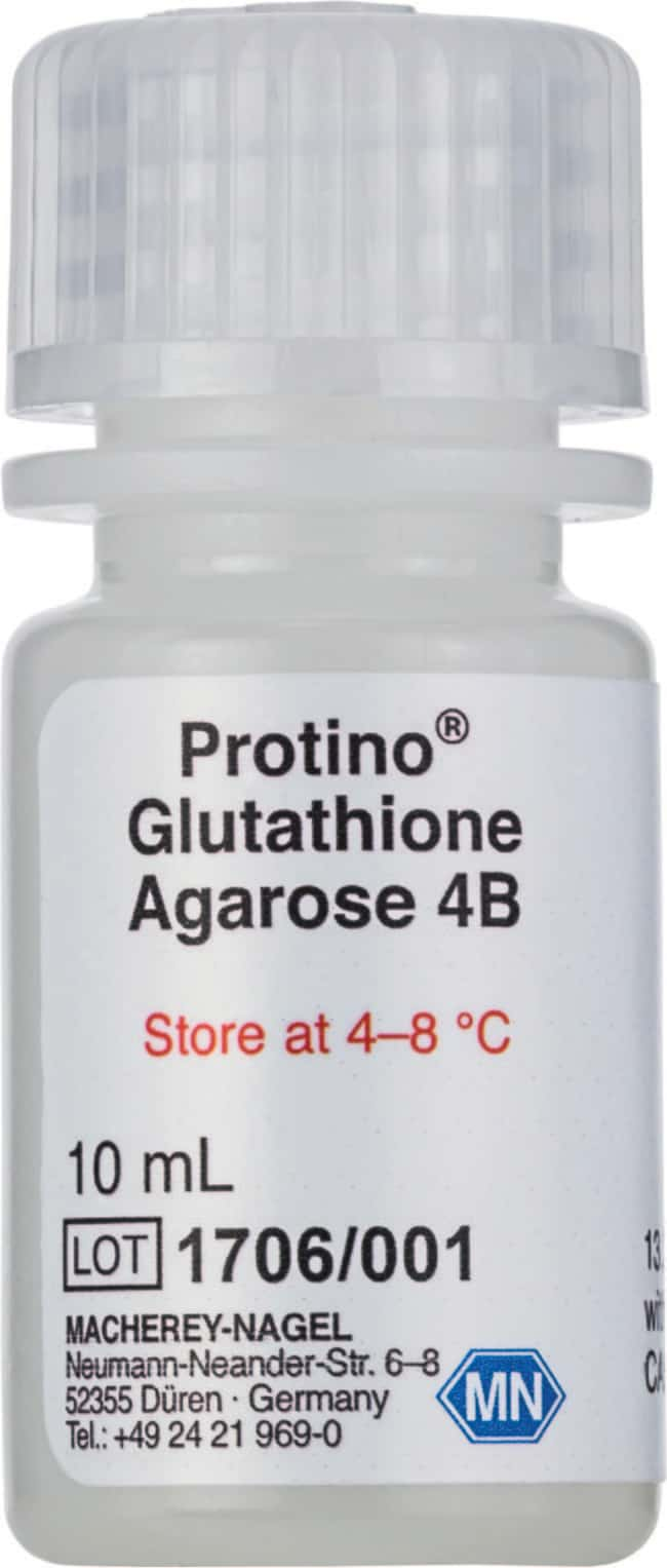 Macherey-Nagel™ Protino™ Glutathione Agarose 4B Bed Volume: 100mL Macherey-Nagel™ Protino™ Glutathione Agarose 4B