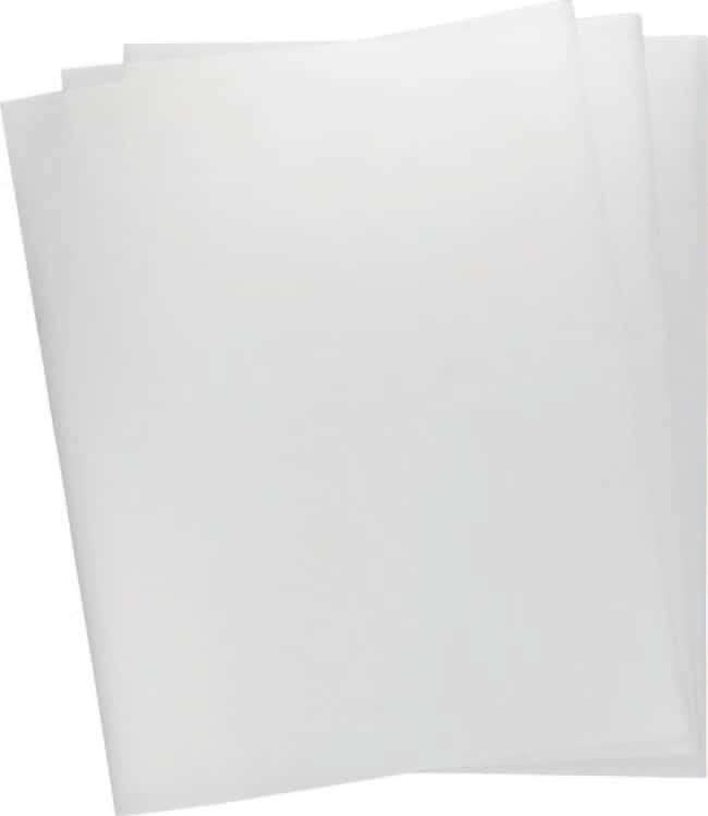 Macherey-Nagel™ Bioanalysis MN 827 B Blotting Papers Size: 160 x 160mm Macherey-Nagel™ Bioanalysis MN 827 B Blotting Papers