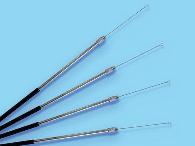 Microspec™Manche pour anse en métal Manche pour anse en métal Anses et aiguilles d'inoculation