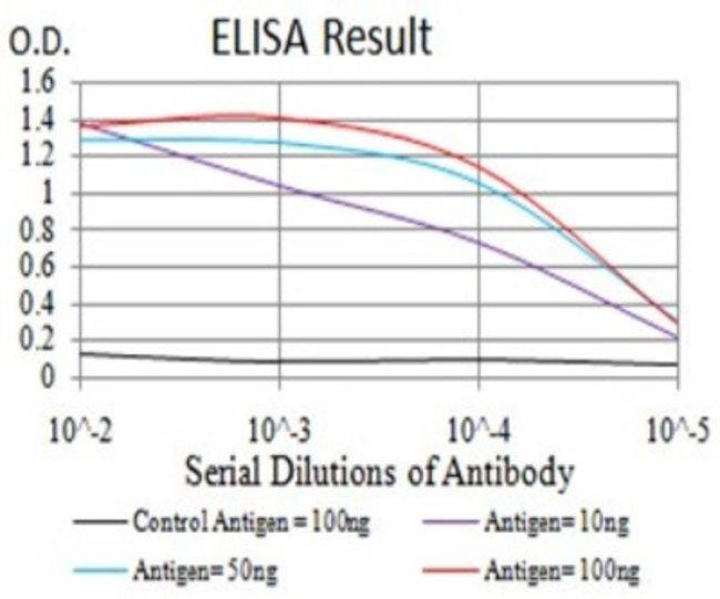 Dnmt3L Mouse anti-Human, Clone: 2D10H11, Novus Biologicals 0.1 ml; Unconjugated