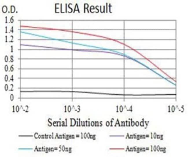 TRANCE/TNFSF11/RANK L Mouse anti-Human, Monkey, Clone: 8A7B9, Novus Biologicals