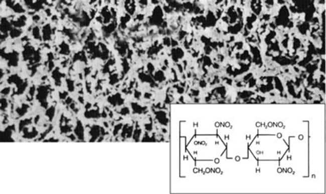 Sartorius Stedim Biotech™Cellulose Nitrate (Mixed Cellulose Ester) Membrane Filters, Type 11327, 0.2μm 47mm, 100/Pk Sartorius Stedim Biotech™Cellulose Nitrate (Mixed Cellulose Ester) Membrane Filters, Type 11327, 0.2μm