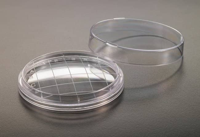 Simport™Contact Plate™  Simport™Contact Plate™