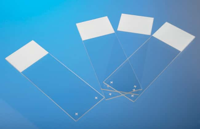 Thermo Scientific™ SuperFrost Plus™ Adhesion slides  Thermo Scientific™ SuperFrost Plus™ Adhesion slides