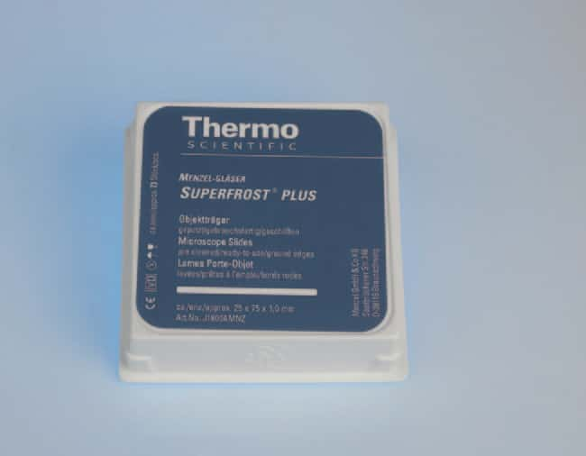 Thermo Scientific™ SuperFrost Plus™ Adhäsionsobjektträger  Thermo Scientific™ SuperFrost Plus™ Adhäsionsobjektträger