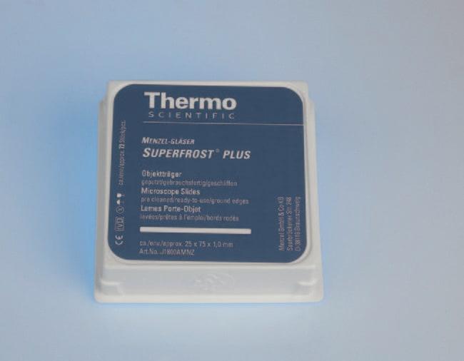 Thermo Scientific™SuperFrost Plus™ Adhäsionsobjektträger  Thermo Scientific™SuperFrost Plus™ Adhäsionsobjektträger