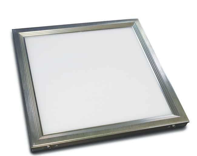 Edvotek™ White Light Box
