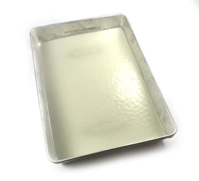 Eisco™Dissection Tray