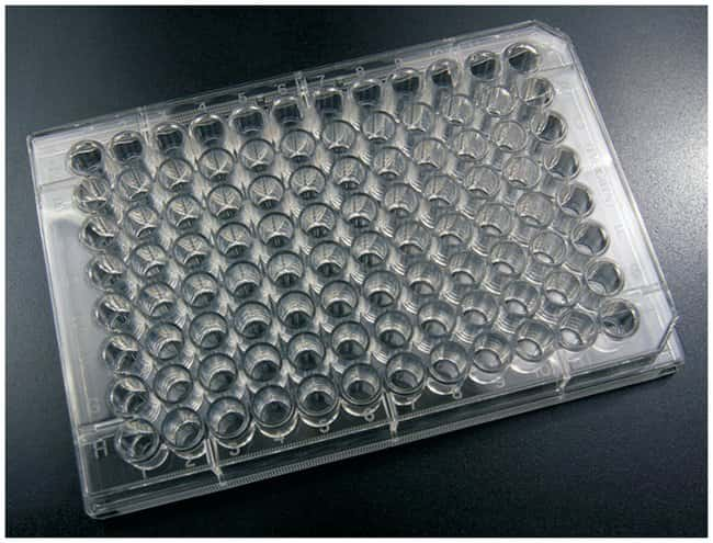 Caplugs Evergreen Scientific Polystyrene Microplate, 96-Well 96-Well; Round
