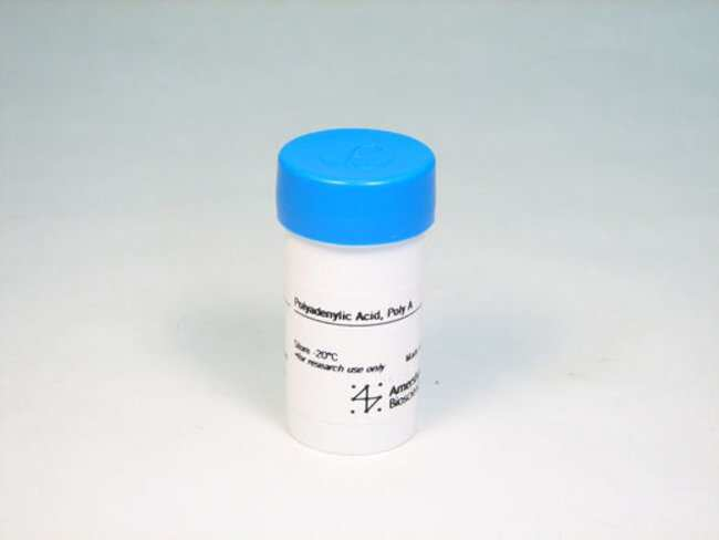 CytivaRNA Homopolymers Poly(rA); 500mg:PCR Equipment and Supplies