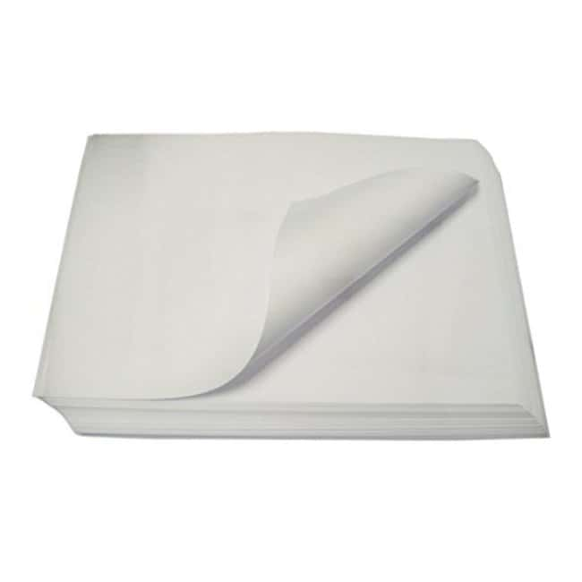 Cytiva (Formerly GE Healthcare Life Sciences) Whatman™ Grade 0905 Qualitative Creped Filter Paper Sheets