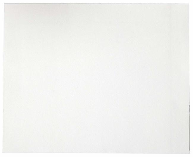 CytivaWhatman Grade GF/B Glass Microfiber Filters 460 x 570mm sheet; 5/Pack:Filters