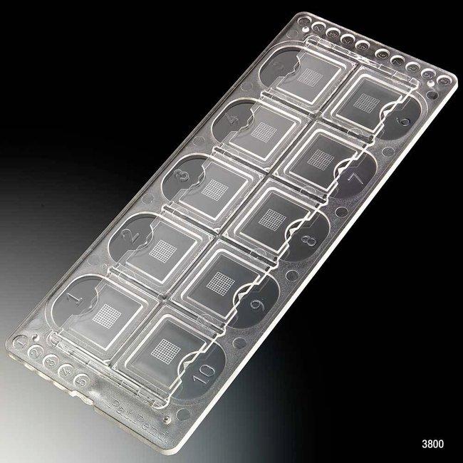 Globe Scientific Quick-Read Precision Grid Urinalysis Slide Quick-Read™