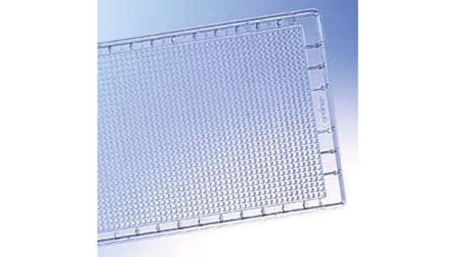 Greiner Bio-One LoBase 1536-Well No-Bottom Plate:Dishes, Plates and Flasks:Microplates