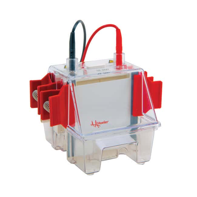 Hoefer™ Mighty Small™ II Mini Vertical Electrophoresis Systems SE260 Basic Hoefer™ Mighty Small™ II Mini Vertical Electrophoresis Systems