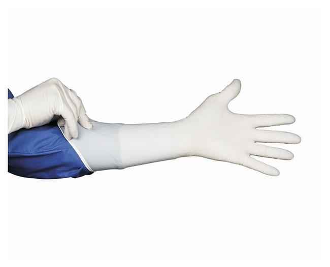 Hourglass International HandPRO Series 6100 Clean Class 100 Nitrile Gloves