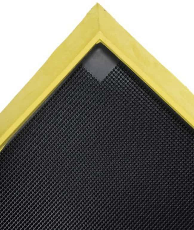 Notrax 351 Sani-Trax Plus Disinfectant Mat:Facility Safety and Maintenance:Floor