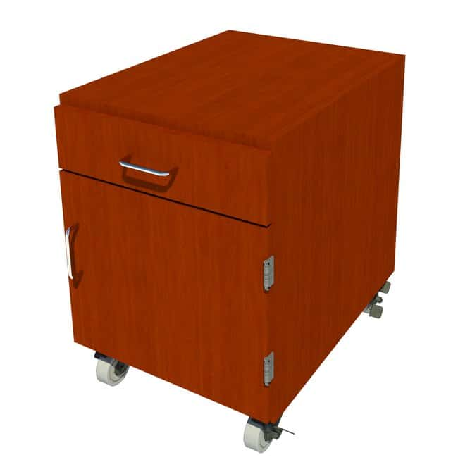 Fisherbrand Mobile Wood Cabinet, 18 in. Wide 1 Door 1 Drawer, 18 in. Wide,
