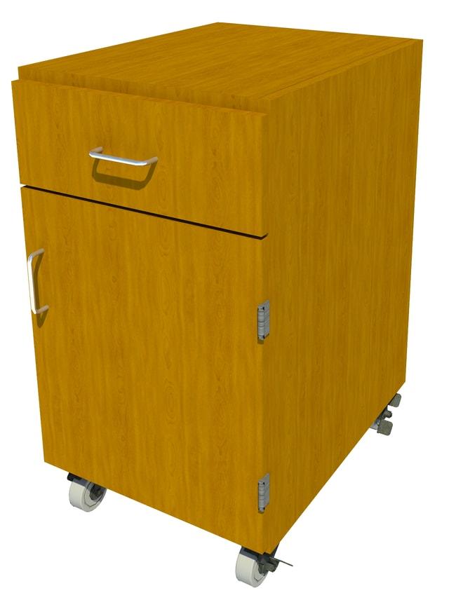 FisherbrandMobile Wood Cabinet, 18 in. Wide 1 Door 1 Drawer, 18 in. Wide,