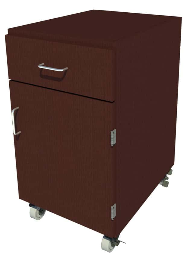 FisherbrandMobile Wood Cabinet, 18 in. Wide 1 Door 1 Drawer, 18 in. Wide,