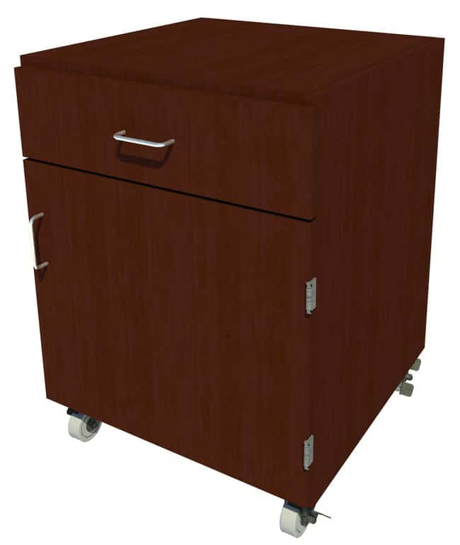 FisherbrandMobile Wood Cabinet, 24 in. Wide:Furniture:Storage Cabinets