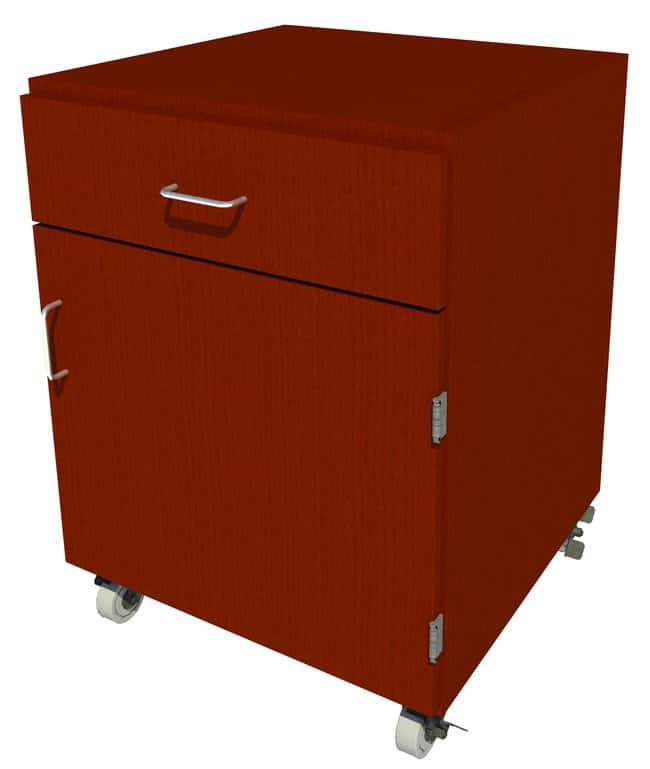FisherbrandMobile Wood Cabinet, 24 in. Wide 1 Door 1 Drawer, 24 in. Wide,