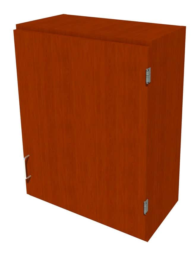 FisherbrandWood Wall Cabinet, 24 in. Wide 1 Solid Door Right Hinged, 24