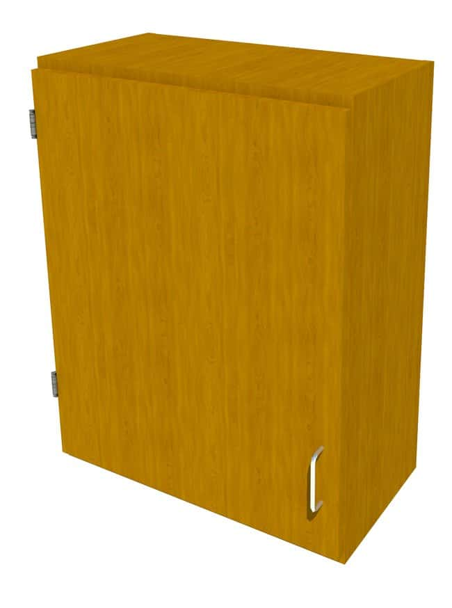Fisherbrand Wood Wall Cabinet, 24 in. Wide 1 Solid Door Left Hinged, 24