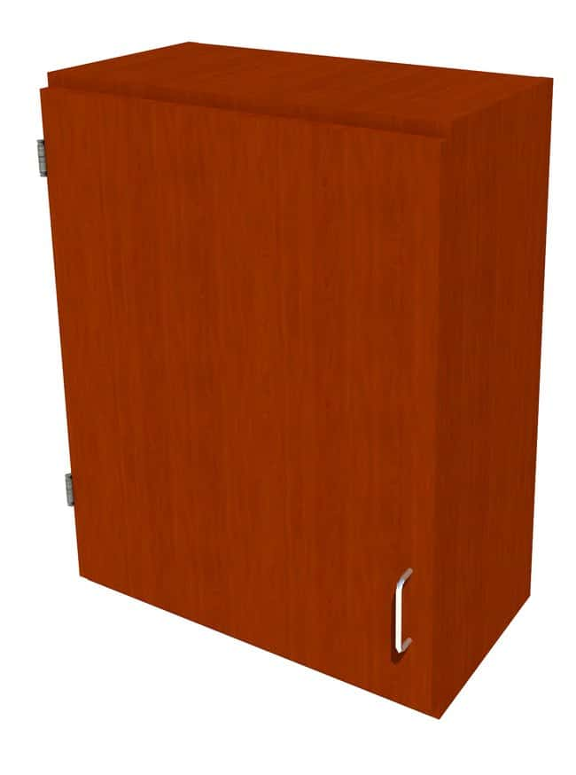 FisherbrandWood Wall Cabinet, 24 in. Wide 1 Solid Door Left Hinged, 24