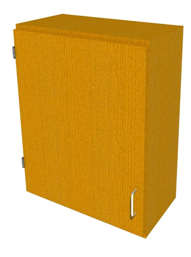 FisherbrandWood Wall Cabinet, 24 in. Wide 1 Solid Door Left Hinged, 24