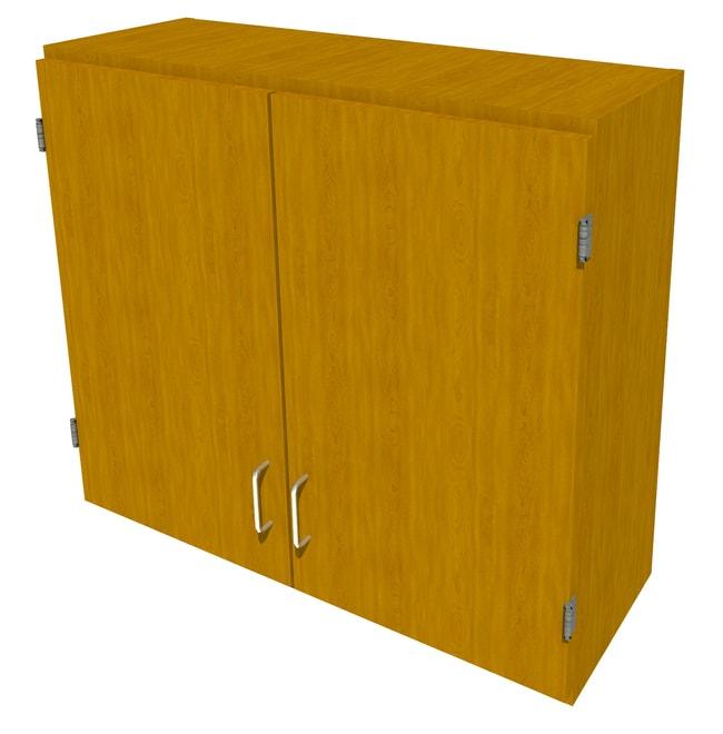FisherbrandWood Wall Cabinet, 36 in. Wide 2 Solid Doors, 36 in. Wide, Maple,
