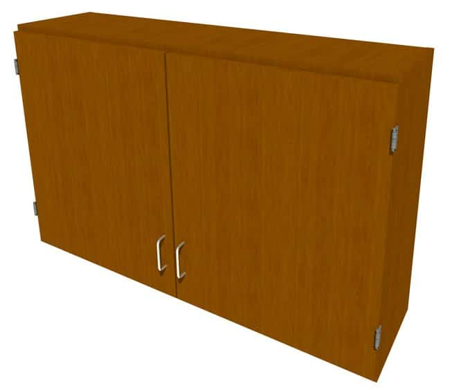 FisherbrandWood Wall Cabinet, 48 in. Wide 2 Solid Doors, 48 in. Wide, Maple,