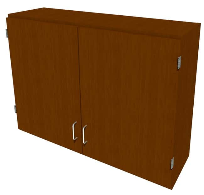 FisherbrandWood Wall Cabinet, 42 in. Wide 2 Solid Doors, 42 in. Wide, Maple,