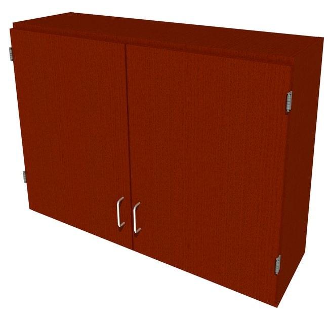 FisherbrandWood Wall Cabinet, 42 in. Wide 2 Solid Doors, 42 in. Wide, Oak,
