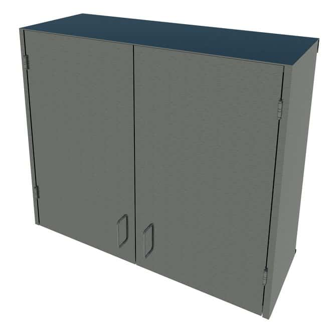 Fisherbrand Stainless Steel Wall Cabinet :Furniture, Storage, Casework,