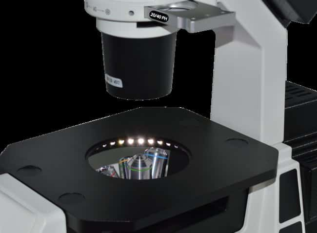 Laxco™ SLI6 Inverted Fluorescence Microscope