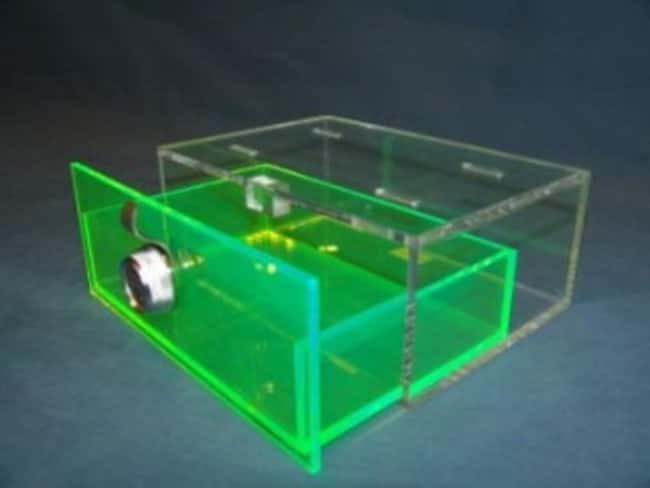 Mitchell Plastics Refrigerator Storage Box with Lock Clear/Green; 3.75