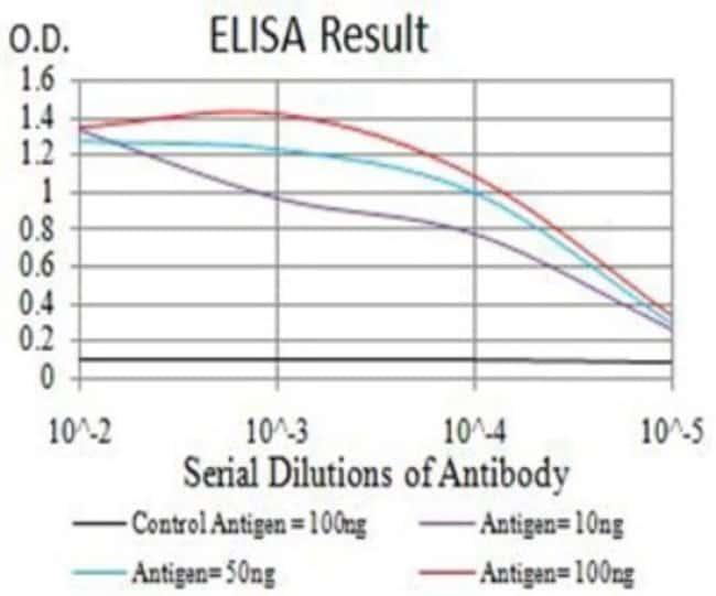 AP-2 gamma Mouse anti-Human, Clone: 3A11A5, Novus Biologicals 0.1 ml; Unconjugated
