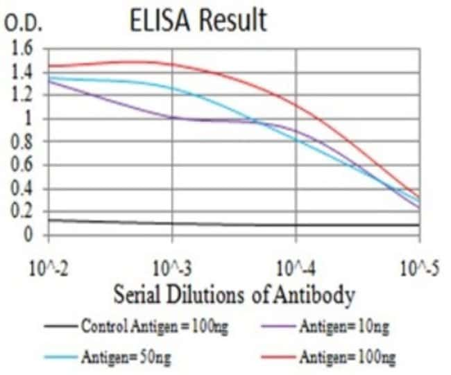 BIN1 Mouse anti-Human, Mouse, Clone: 3B6F10, Novus Biologicals 0.1 ml;