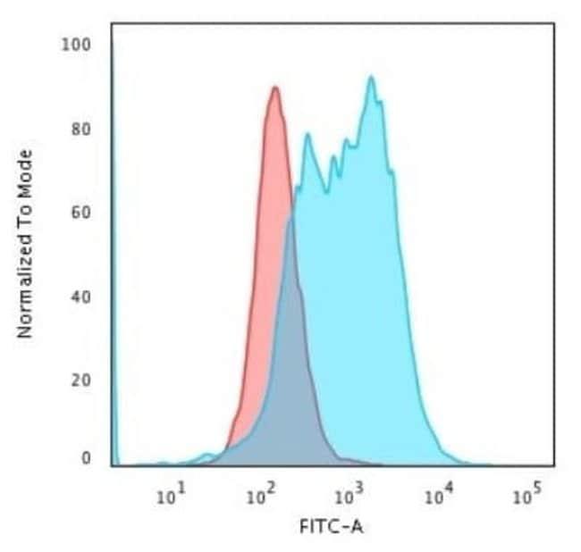 Bcl-10 Rabbit anti-Human, Clone: BL10/2988R, Novus Biologicals:Antibodies:Primary