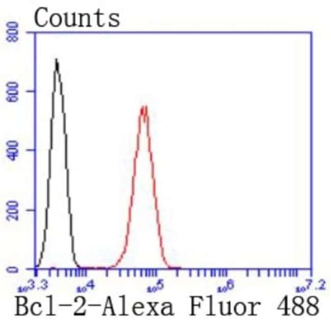 Bcl-2 Rabbit anti-Human, Clone: JF104-8, Novus Biologicals 100µL