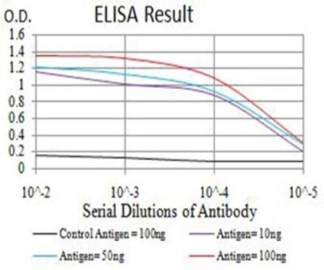 CBX7 Mouse anti-Human, Clone: 3H9C4, Novus Biologicals 0.1 ml; Unconjugated