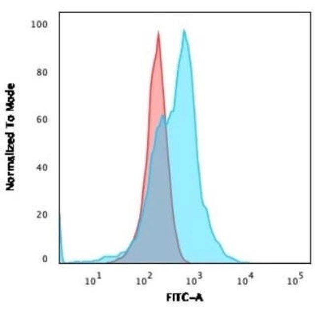 CD21 Rabbit anti-Human, Clone: CR2/3124R, Novus Biologicals:Antibodies:Primary