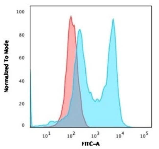 CD6 Rabbit anti-Human, Clone: C6/2884R, Novus Biologicals:Antibodies:Primary