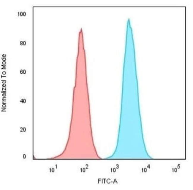 CD74 Rabbit anti-Human, Mouse, Baboon, Clone: CLIP/3127R, Novus Biologicals:Antibodies:Primary