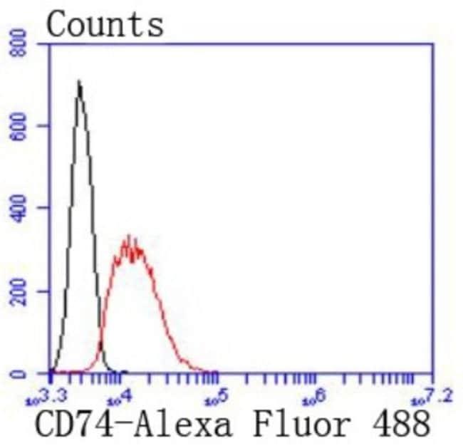 CD74 Rabbit anti-Human, Clone: JF40-10, Novus Biologicals 100µL