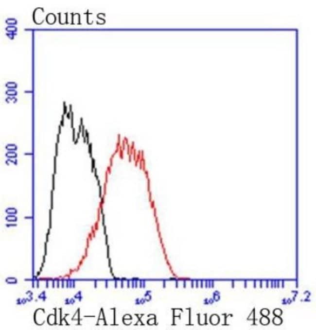 CDK4 Rabbit anti-Human, Mouse, Clone: SD20-42, Novus Biologicals 100μL:Antibodies