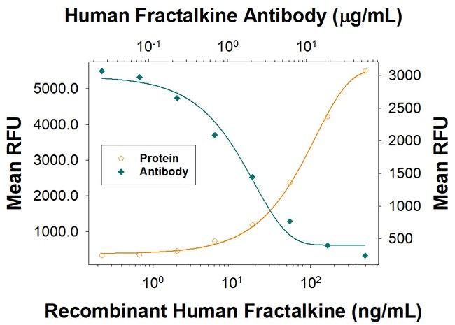 CX3CL1/Fractalkine, Mouse anti-Human, Clone: 81506R, R:Antibodies:Primary