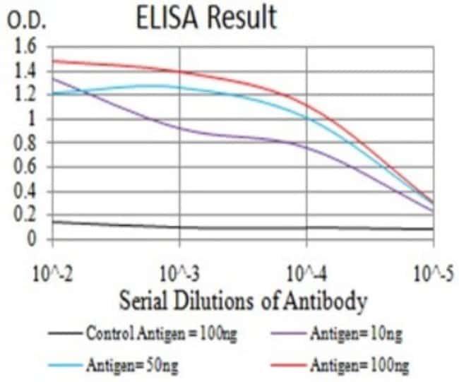 Complement C3 Mouse anti-Human, Clone: 4C6A8, Novus Biologicals 0.1 ml;